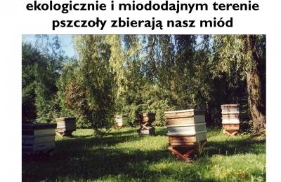 Pasieka Kujawska Apicom-6.jpg